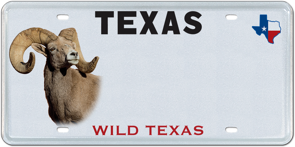 Texas Parks and Wildlife - Bighorn Sheep