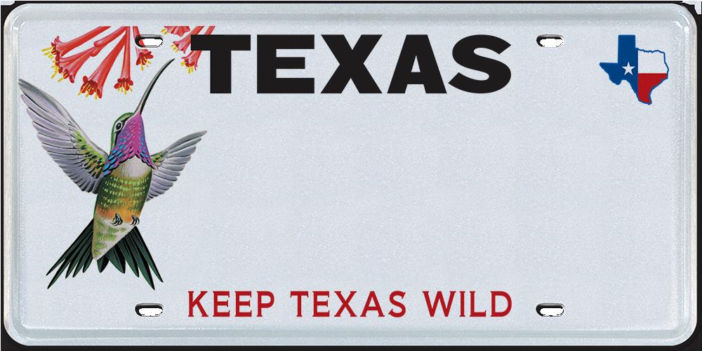 Texas Parks and Wildlife -Hummingbird