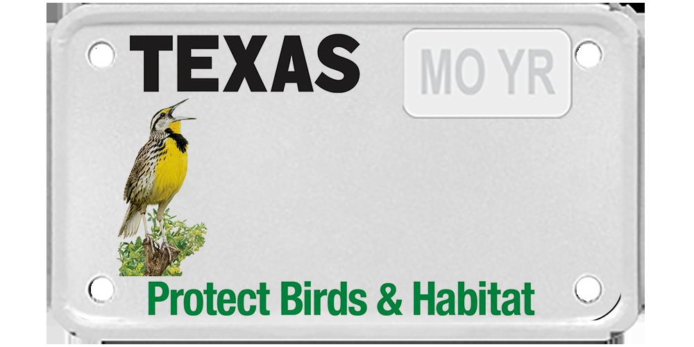 Houston Audubon (Birds and Habitat)