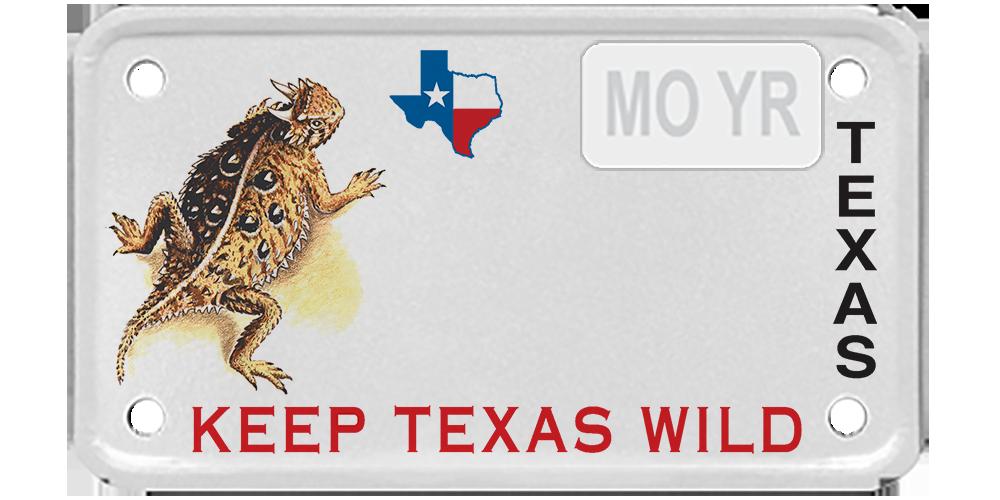 Texas Parks and Wildlife - Horned Lizard